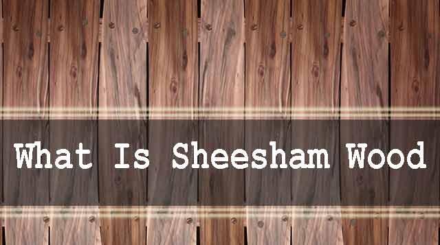 What is Sheesham Wood