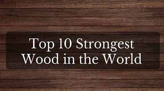 Strongest Wood