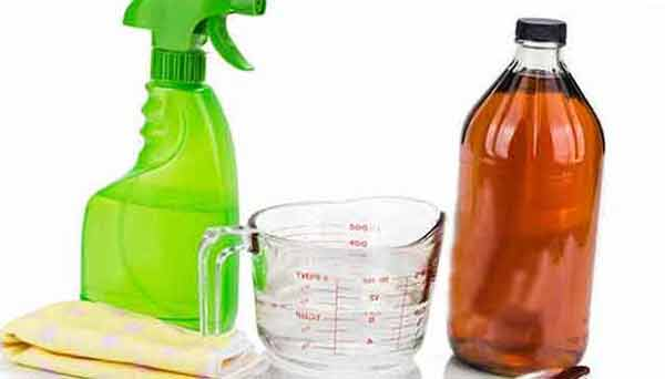 vinegar And water Solution