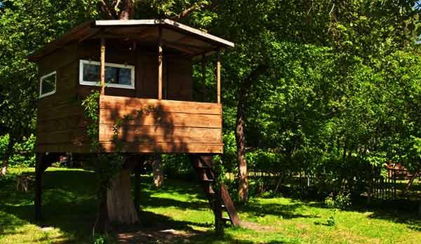 Survival-Tree-House